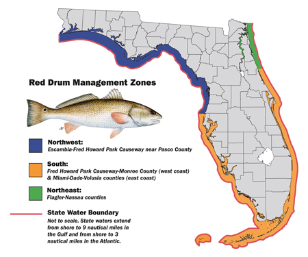 red drum management zones redifsh map