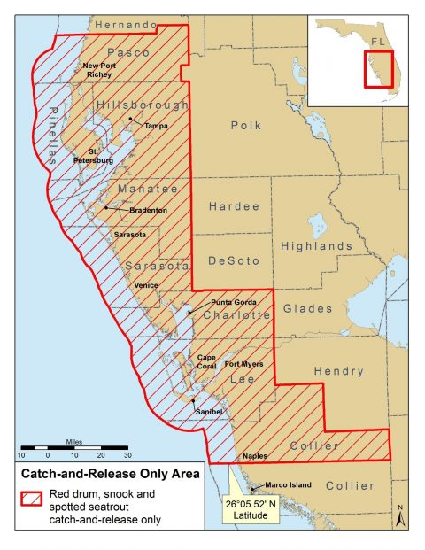 redtide snook redfish trout regulations map